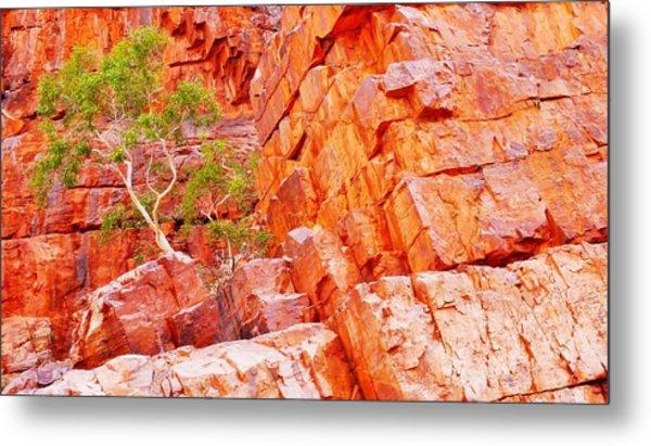 Colours Of Ormiston Gorge, Northern Territory Metal Print