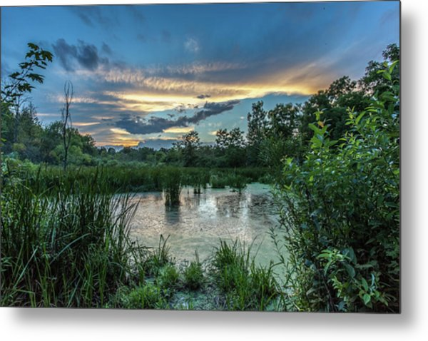 Columbia Marsh Sunset Metal Print