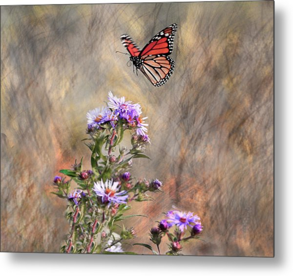Comeing In For A Landing Metal Print by James Steele
