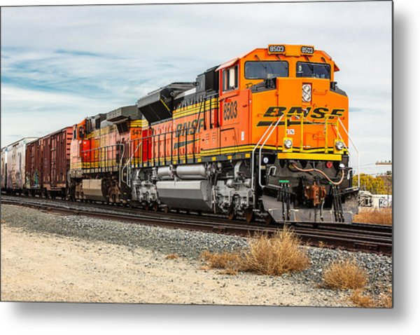 Coming Through Livingston Metal Print