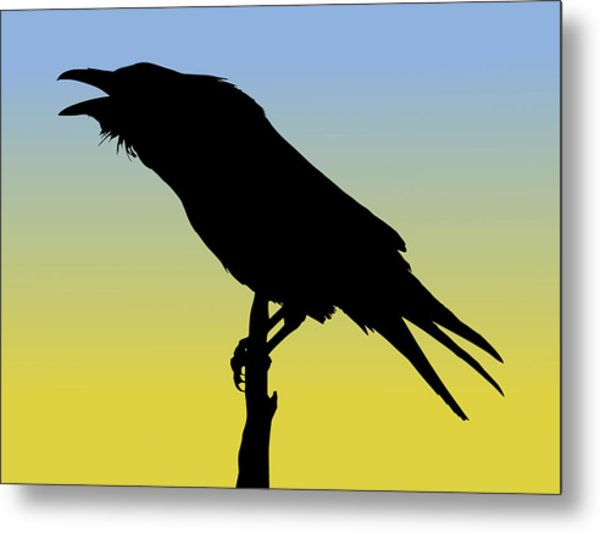 Common Raven Silhouette At Sunrise Metal Print