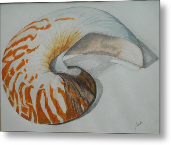Conch Metal Print
