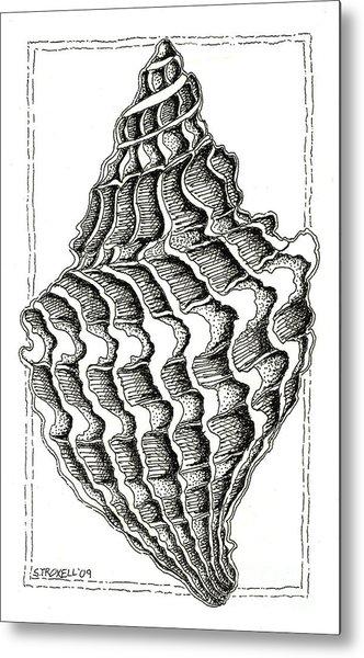Conch Shell 2 Metal Print