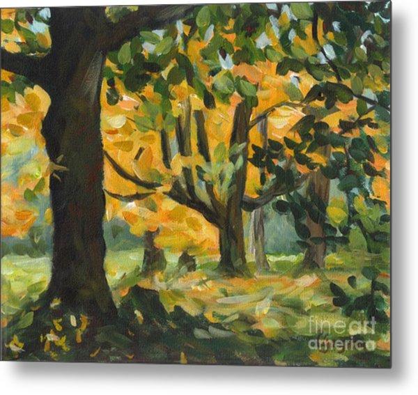 Concord Fall Trees Metal Print