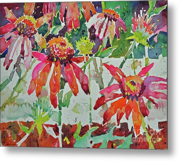 Cone Flowers And  Three Bands Metal Print