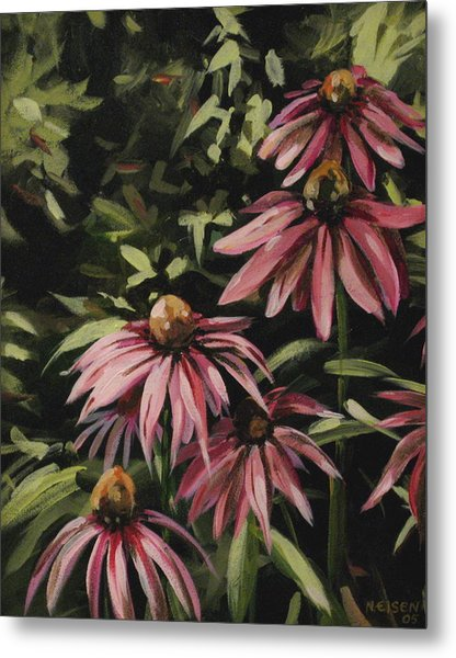 Coneflowers Metal Print
