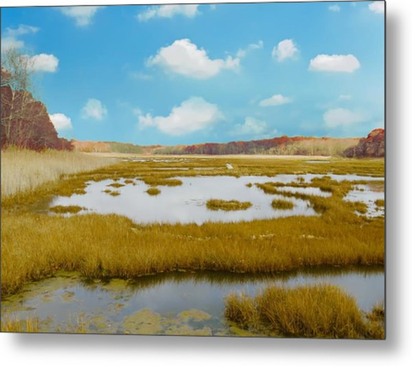 Connecticut Salt Water Marsh Metal Print