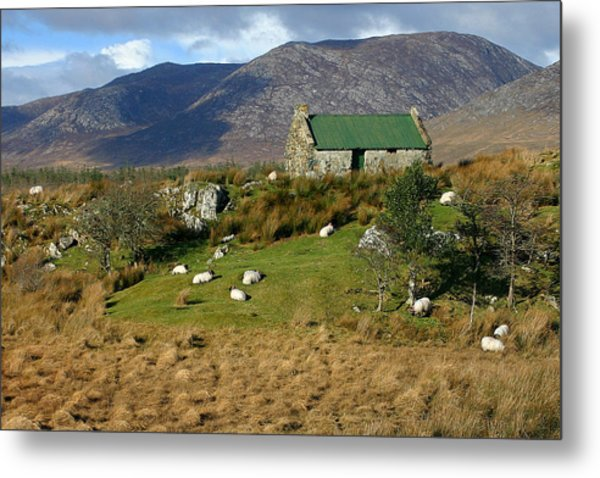 Connemara Cottage Ireland Metal Print