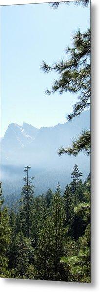 3 Of 4 Controlled Burn Of Yosemite Section Metal Print