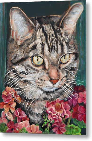 Cooper The Cat Metal Print