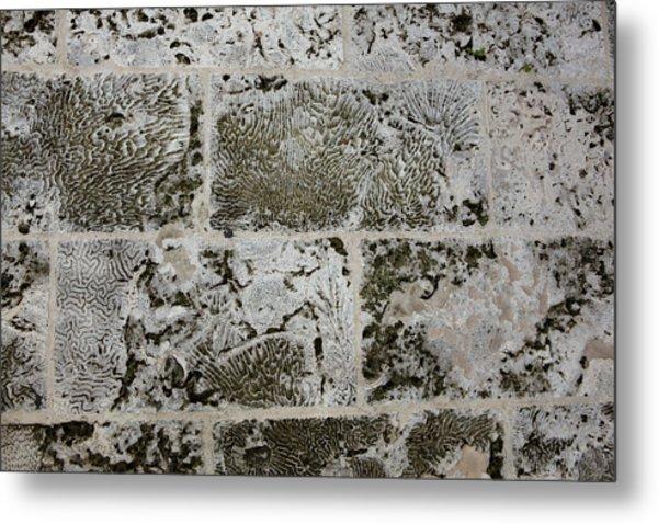 Coral Wall 205 Metal Print