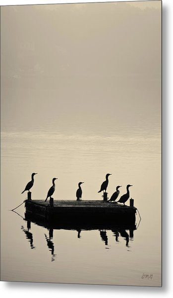 Cormorants And Dock Taunton River No. 2 Metal Print