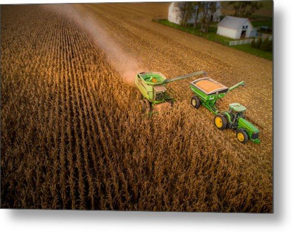 Corn Dust Metal Print