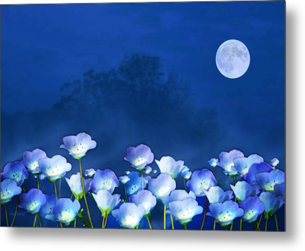 Cornflowers In The Moonlight Metal Print
