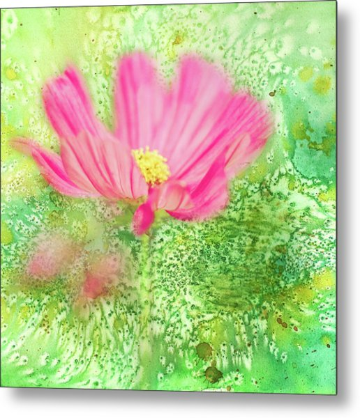 Cosmos On Green Metal Print