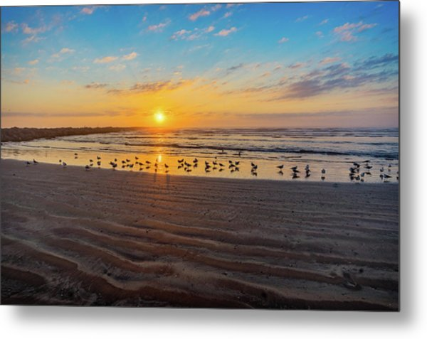 Coastal Sunrise Metal Print