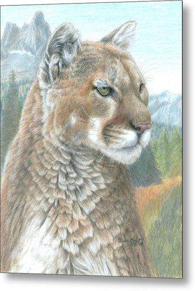 Cougar 2 Metal Print