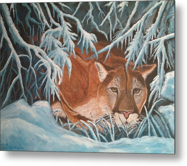 Cougar In Snow Metal Print by Nick Gustafson