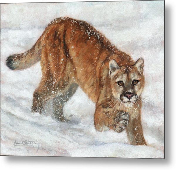 Cougar In The Snow Metal Print