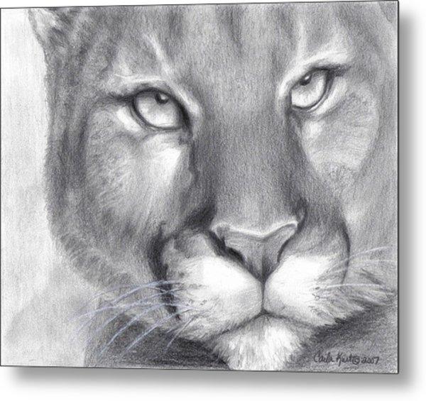 Cougar Spirit Metal Print by Carla Kurt
