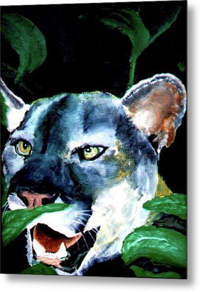 Cougar Metal Print by Stan Hamilton