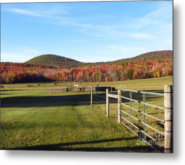 Country Farm And Family Plot Metal Print