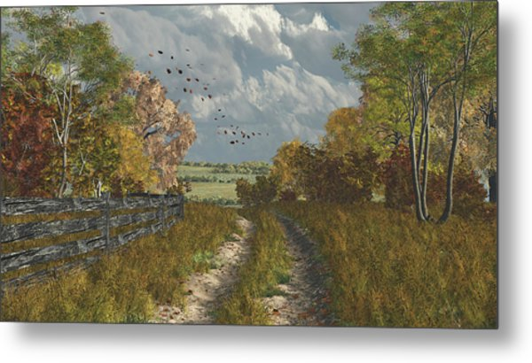 Country Lane In Fall Metal Print