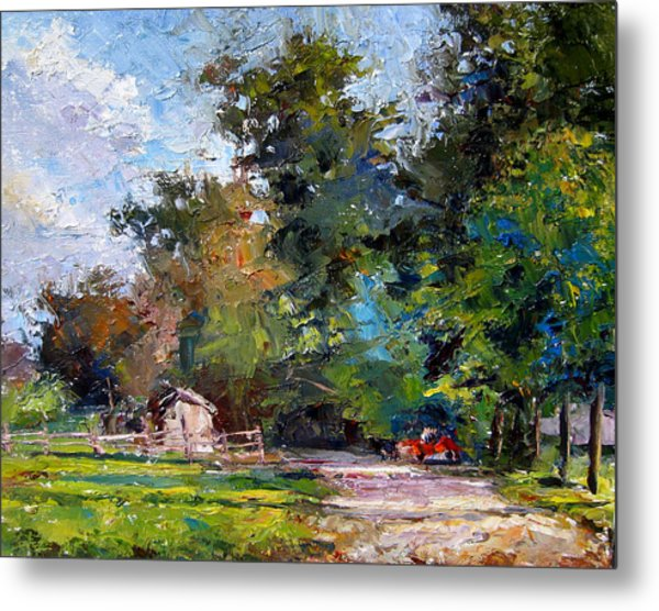 Country Lane Metal Print by Mark Hartung