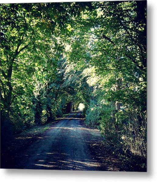 Country Lane, Tree Tunnel Metal Print