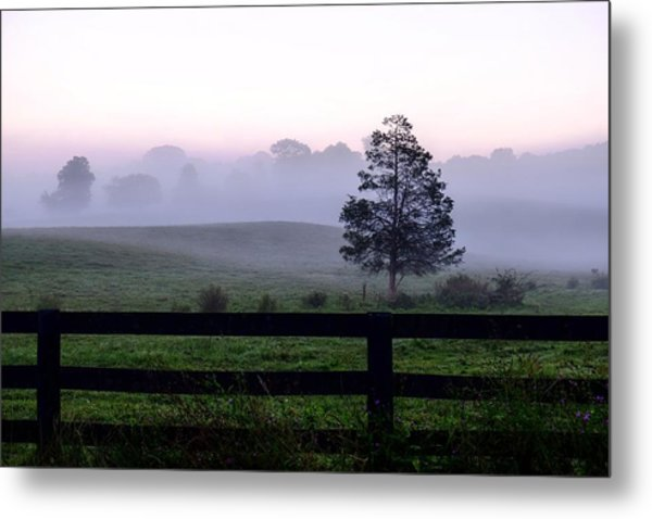 Country Morning Fog Metal Print