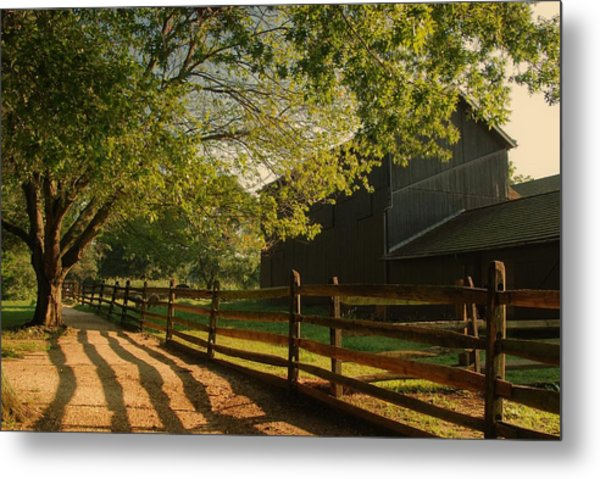 Country Morning - Holmdel Park Metal Print