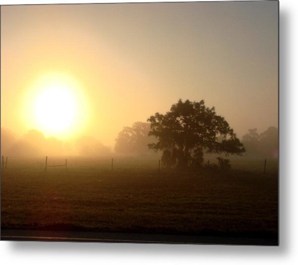 Country Morning Sunrise Metal Print by Kimberly Camacho
