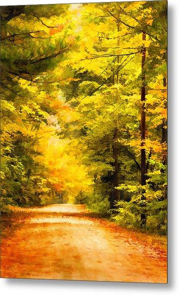 Country Road In Autumn Digital Art Metal Print