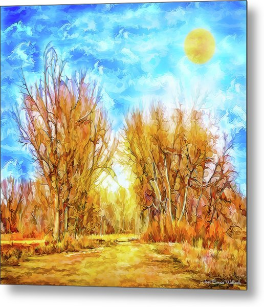 Country Road Wandering Metal Print