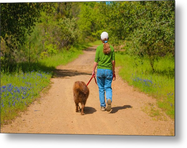 Metal Print featuring the photograph Country Roads Take Me Home by Sherri Meyer