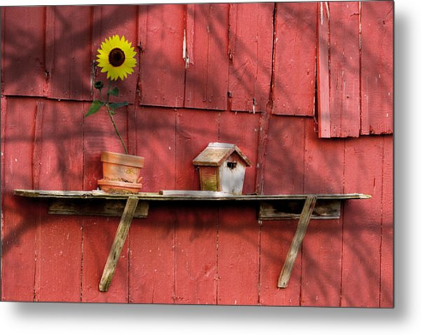 Country Still Life II Metal Print