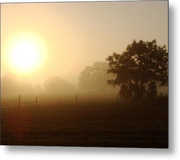 Country Sunrise Metal Print by Kimberly Camacho