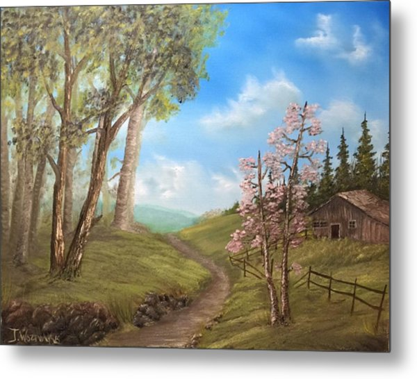 Country Valley  Metal Print