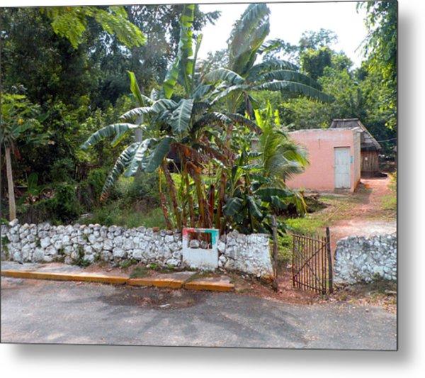 Countryside Along The Yucatan Peninsula Metal Print