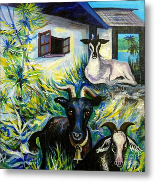Countryside Of Jamaica Metal Print