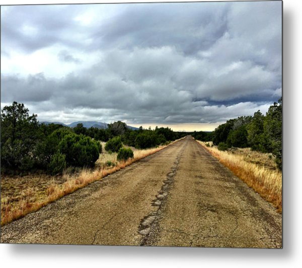 County Road Metal Print