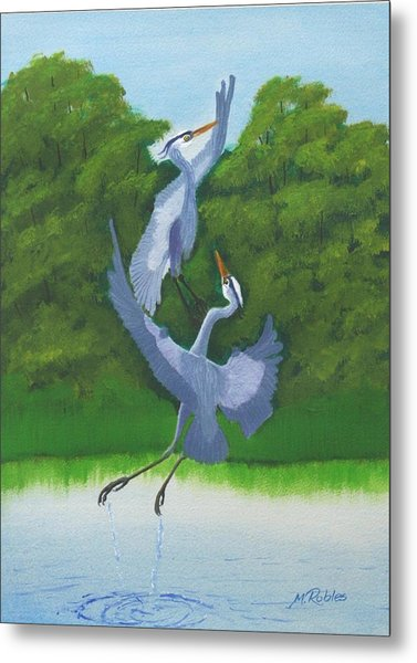 Courtship Dance Metal Print