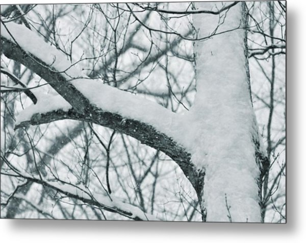 Covered In White Metal Print by JAMART Photography