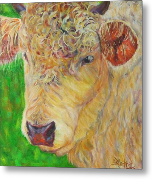 Cute And Curly Cow Metal Print