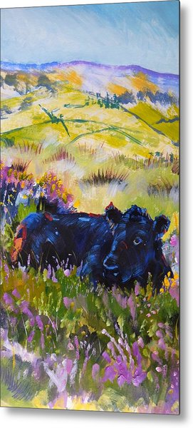 Cow Lying Down Among Plants Metal Print