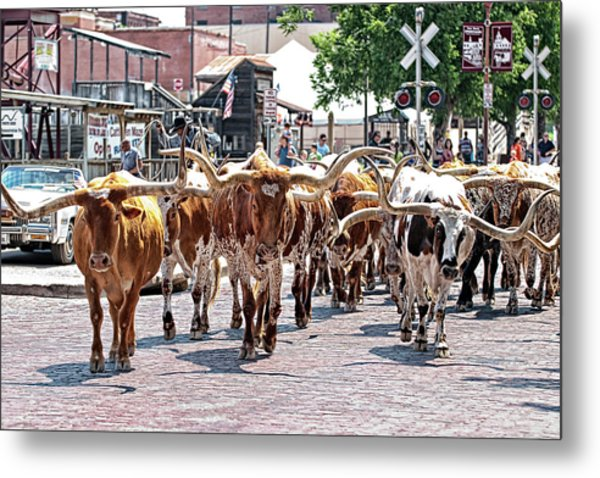 Cowtown Stockyards Metal Print
