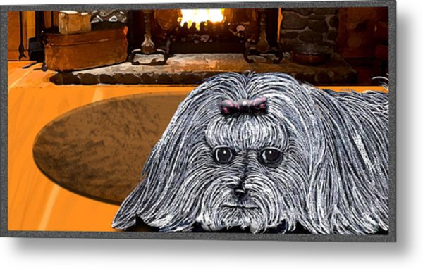 Metal Print featuring the drawing Cozy Maltese by Michelle Audas