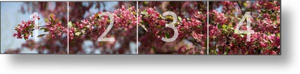 Crabapple In Spring Panoramic Map Metal Print