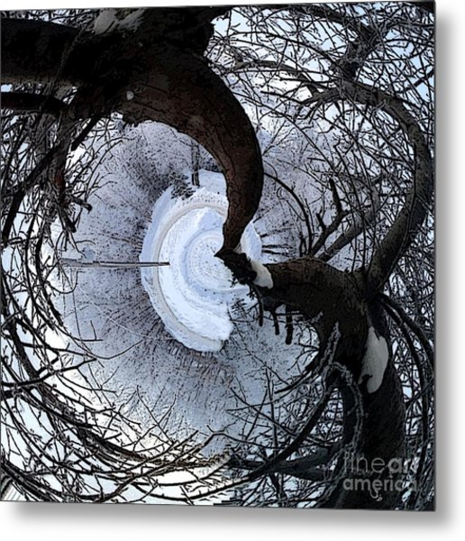 Crabapple Tree Metal Print