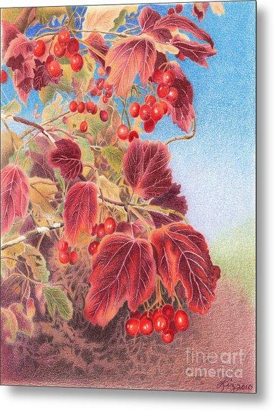 Cranberry Bush In Autumn Metal Print by Elizabeth Dobbs